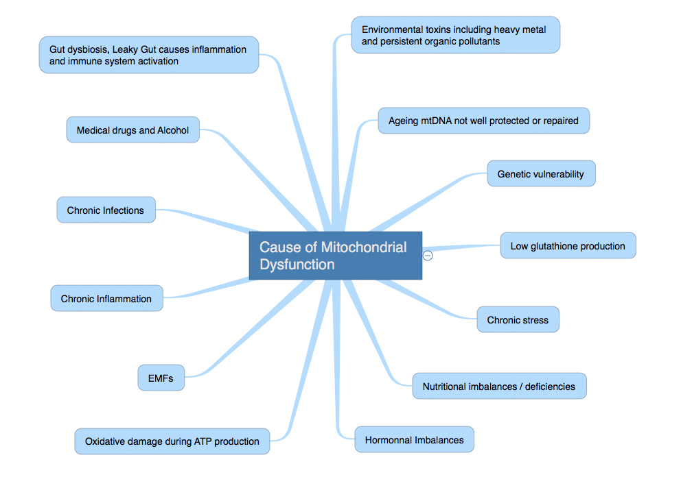 Cause_of_Mitochondrial_Dysfunction