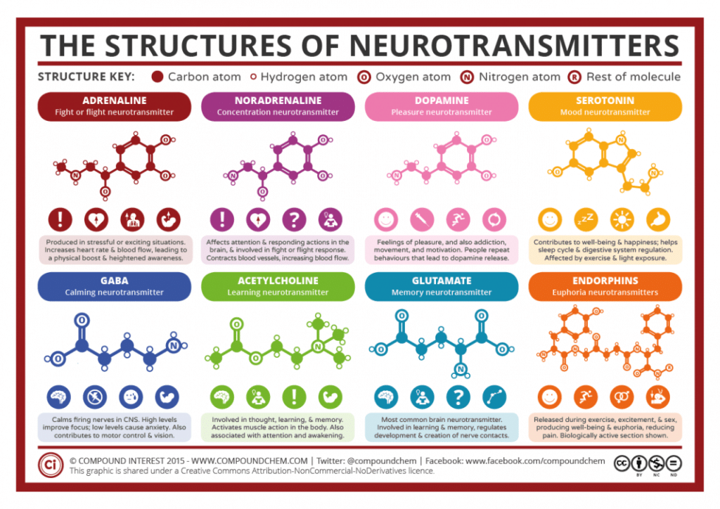 Chemical-Structures-of-Neurotransmitters by trulyheal