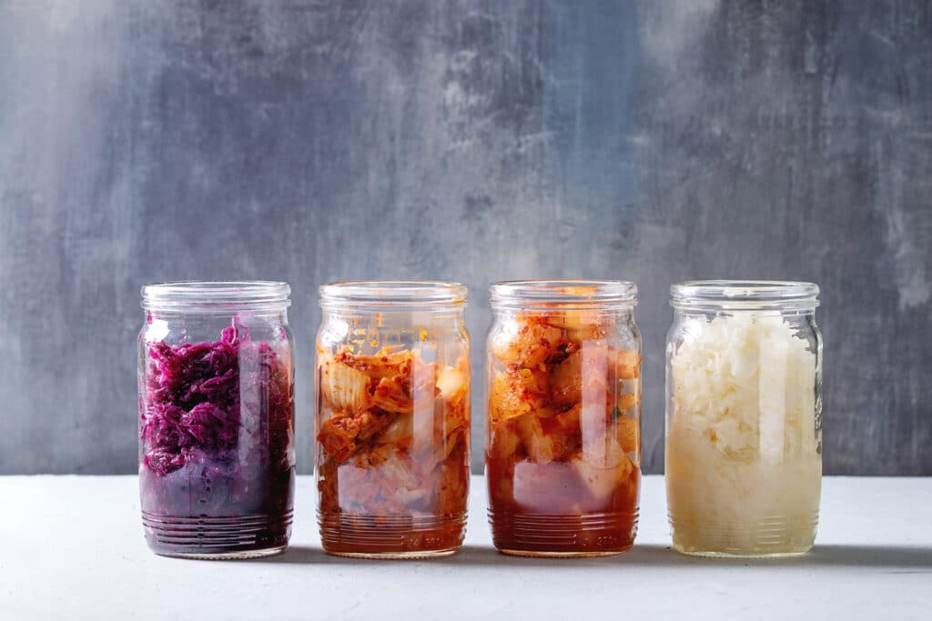 variety-of-fermented-food